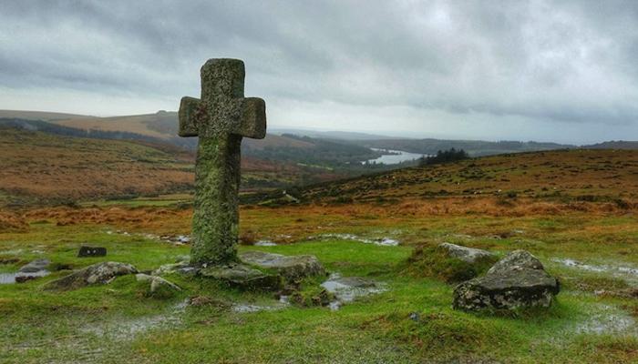 El bosque de Dartmoor